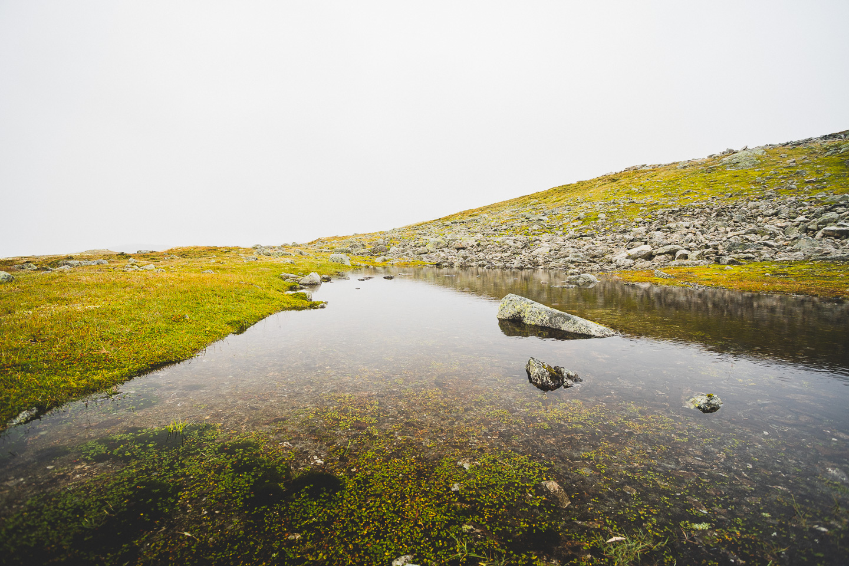2019-09-05-10-47-27-Landscape-DSC09980
