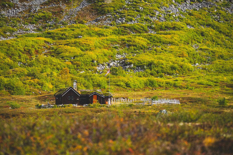 2019-09-10-12-13-25-Landscape-DSC01026