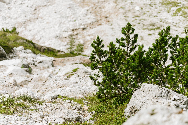 2020-09-01-12-57-10-Landscape-DSC03104